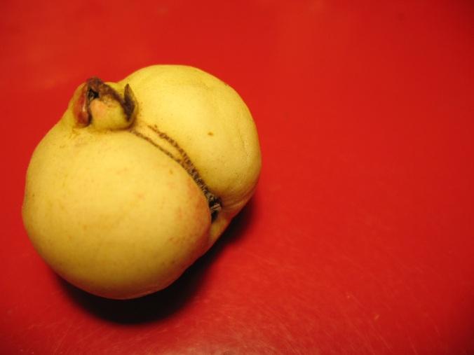 Erotic Guava